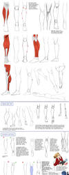 Calfs Tutorial by Precia-T