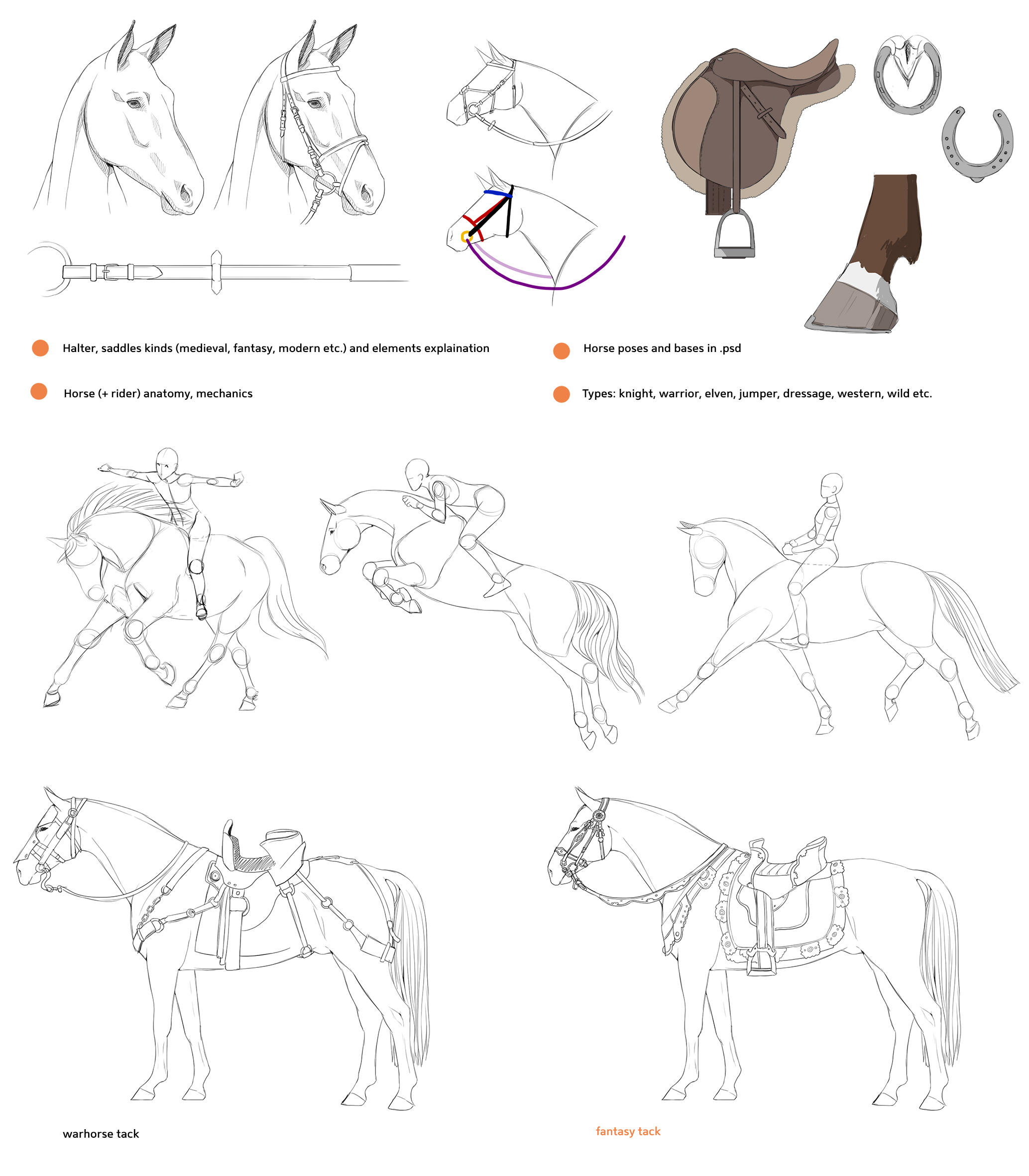 Equine Favourites By Corruptashes On Deviantart