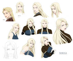 TARGA - Nebula - Final design by Precia-T