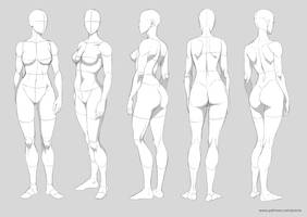 Basic anatomy - 60th pack by Precia-T