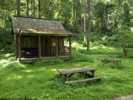 Forest retreat by NickACJones