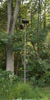 Evergreen monitoring perch by NickACJones