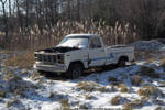 Frozen Ford F100 Custom by NickACJones