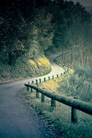 Tuscan Road by dobieks