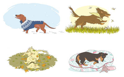 Seasons of Doxie by tinkerbelcky