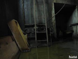Ladder at cellar by Paintluk