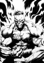 Incredible Hulk by davidyardin