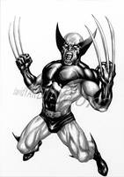 Wolverine Commission by davidyardin