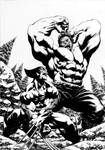 Wolverine Vs Hulk by davidyardin
