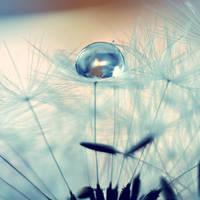 Fragile by VinTage90
