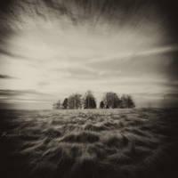 Shadows In Silence by ro-mi-go