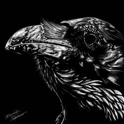 Raven by xKaref