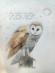 Owl by ElenNeonArt