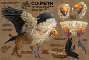 Ciameth Reference by Ciameth