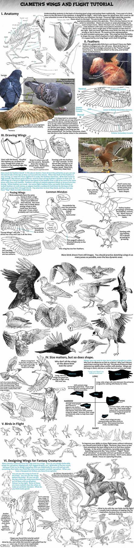 Ciameth's Wing Tutorial by Ciameth