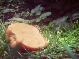 Apple-Wood by flexi-joe