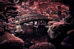 Imperial Garden by DavidNowak