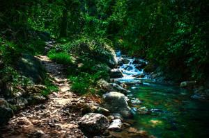 Path Through Thailand by DavidNowak