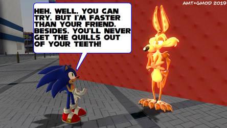 Sonic and Wile E. by AngusMcTavish