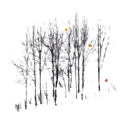 Autumn's Song by saiaii