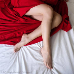 Legs on Red and White by inessentialstuff