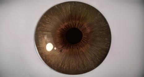 EyeVrv by GBoGBo
