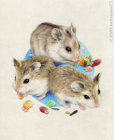 My hamsters by hedspace77