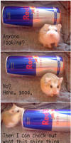 Red Bull Hamster by hedspace77