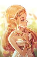 Zelda - BoTW by Klegs