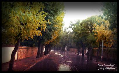 Autumn is Living by princessfromsea