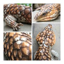 Sleepy bobtail by kayne