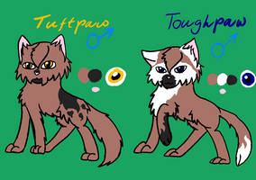 Toughpaw and Tuftpaw tryouts [CLOSED] by SolarNightengale