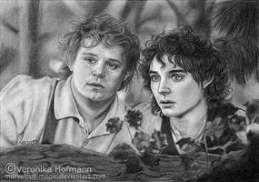 Lotr: Frodo and Sam by Verlisaerys