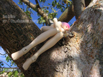 Appleberry, Bare. Part 4 by StellarTransmission
