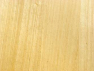 texture Door 02 :wood: by stockmacedonia