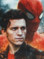Spider-Man by oliv-15