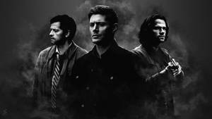 Team Free Will 5 by oliv-15