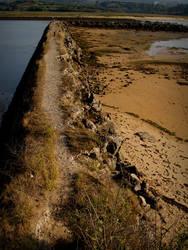 Sin barreras... Dia hispano 2012 by disalicia