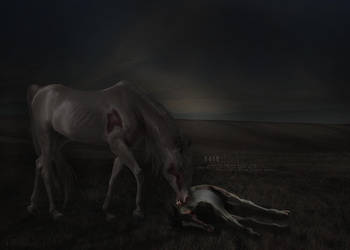 cain .. a vampyric horse by Evanescent-Designs