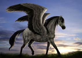 Pegasus by porcelianDoll