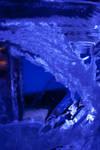 whitenight2008 - 002 by kymw