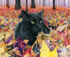 Memories of Autumn by FelesTacita