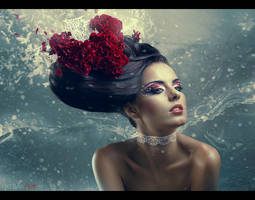 Wind Symphony by BigBad-Red