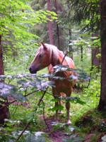 horse3 by JulchenBunny