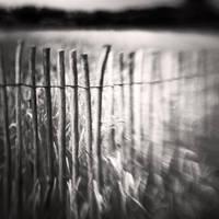 Fence by Jez92