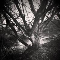 Camera Obscura IV by Jez92