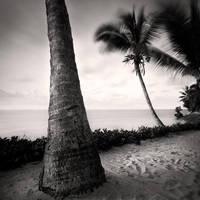 Mombasa Beach I by Jez92