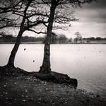 Pen Ponds I by Jez92