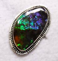 Big Ammolite ring by FlagstaffTraders