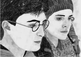 Harry and Hermione by megzy94